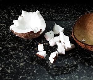 coconut milk recipe steps